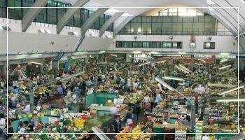 <b>Il mercato annonario di Sanremo</b> - Foto Sanremo Promotion