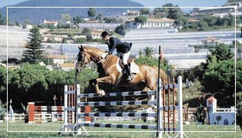 Horse riding and show jumping in San Remo - Photo