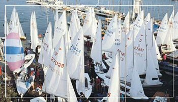 Sails in San Remo old port - Foto APT RdF